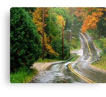 Rain on A Country Road Metal Print