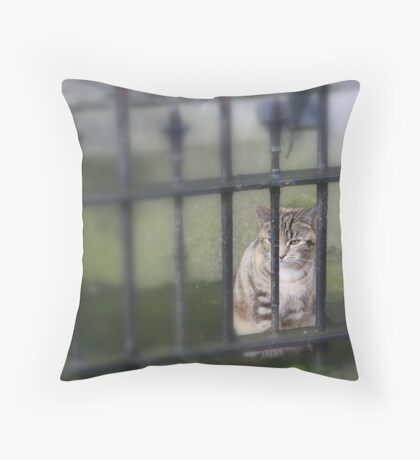 PUSS AND BARS Throw Pillow