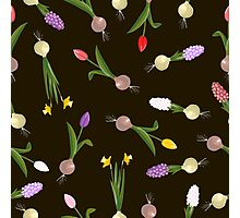 spring background sweet seamless flovers pattern Photographic Print