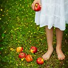 red apples by Joana Kruse