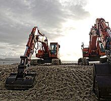 Orange Giants At The Beach,,,,,,,,,,, by lynn carter