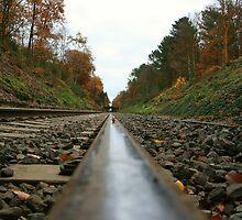 Railroad Symmetry  by JenTheDuck