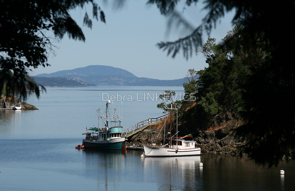 View from Butchart Gardens by Debra LINKEVICS
