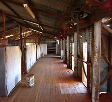 woolshed by BigRed