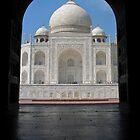Majestic Taj by Nadine Incoll