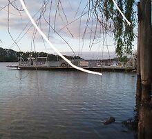 Mannum Ferry. by elphonline