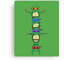 Ninja Turtle Canvas Print