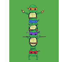Ninja Turtle Photographic Print