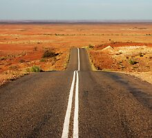 The Long and Winding Road by Tainia Finlay