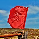 Crimson music by Karen01