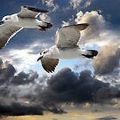 Above the sky by LudaNayvelt