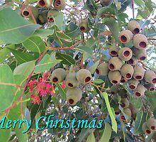 Gum Nut Christmas by toryworgan