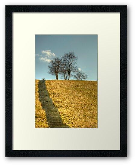 Steps and More Steps  by John  Kapusta