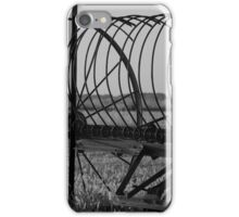 Countryside iPhone Case/Skin