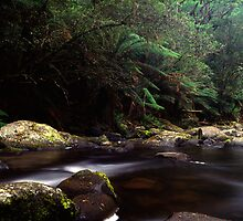 Aire River by Lachlan Doig