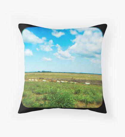 Cattle Walk the Line Throw Pillow