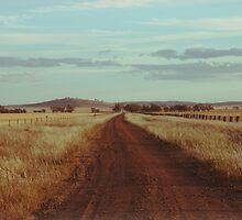 Road To Nowhere by Bryan Davidson