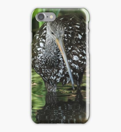 Limpkin on the hunt iPhone Case/Skin