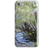 Swamp Reflections iPhone Case/Skin