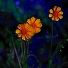 Wildflowers by Kim Roper