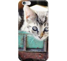 Kitten in Toy Truck iPhone Case/Skin
