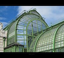 Greenhouse in the Vienna's park - View 4 by Roberta Angiolani