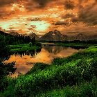 Ox Bow Bend by Barbara D Richards