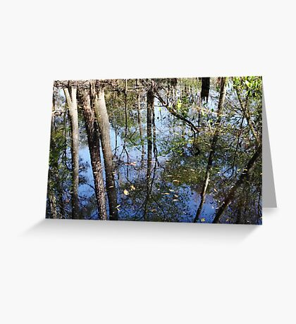 Still More Swamp Reflections Greeting Card