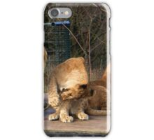 Playful young Lion iPhone Case/Skin