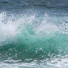 The Crystal Wave by Bev Woodman