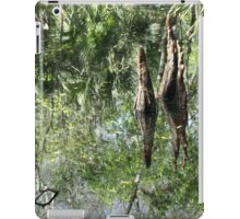 Yet Another Swamp Reflection iPad Case/Skin