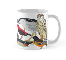 Birds of North America (model 1) Mug