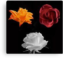 Rose Compilation Canvas Print