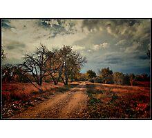 Colorado Autumn Photographic Print