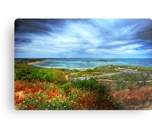 Peron from the lookout Metal Print