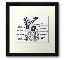 Cardio in Colour Framed Print