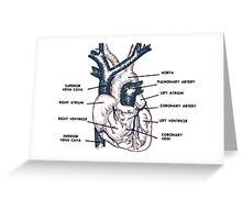 Cardio in Colour Greeting Card