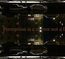 Perception is a mirror not a fact by HeklaHekla