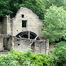 The Old Mill - Jesmond Dene, Newcastle by VictoriaM