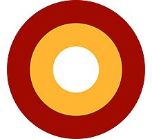 Roundel of the Qatar Emiri Air Force  Photographic Print