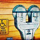 Parking Meter 2 by Kate Wilhelm
