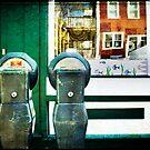 Parking Meter 17 by Kate Wilhelm