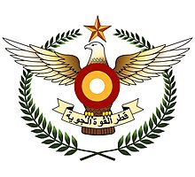 Qatar Air Force Emblem Photographic Print