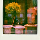 Faux-polaroids - Travelling (15) by Pascale Baud