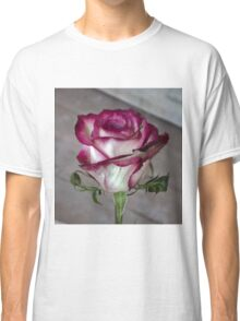 Pink rose 6 Classic T-Shirt