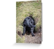 Does my bum look big in this ...!! Greeting Card