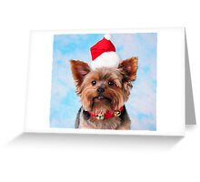 Christmas Pup Jingle Greeting Card
