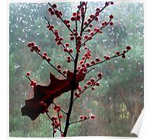 November inside/outside Poster