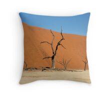 Deadvlei, Namib Desert, Namibia Throw Pillow