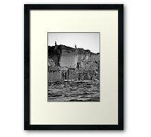 Farne Island Cormorants Framed Print